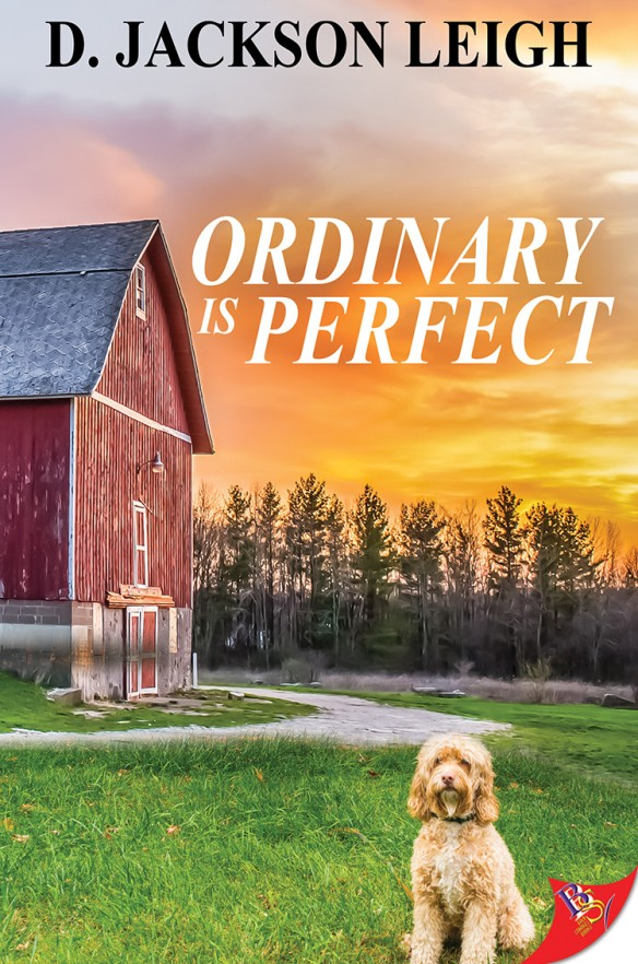 ordinary-is-perfect
